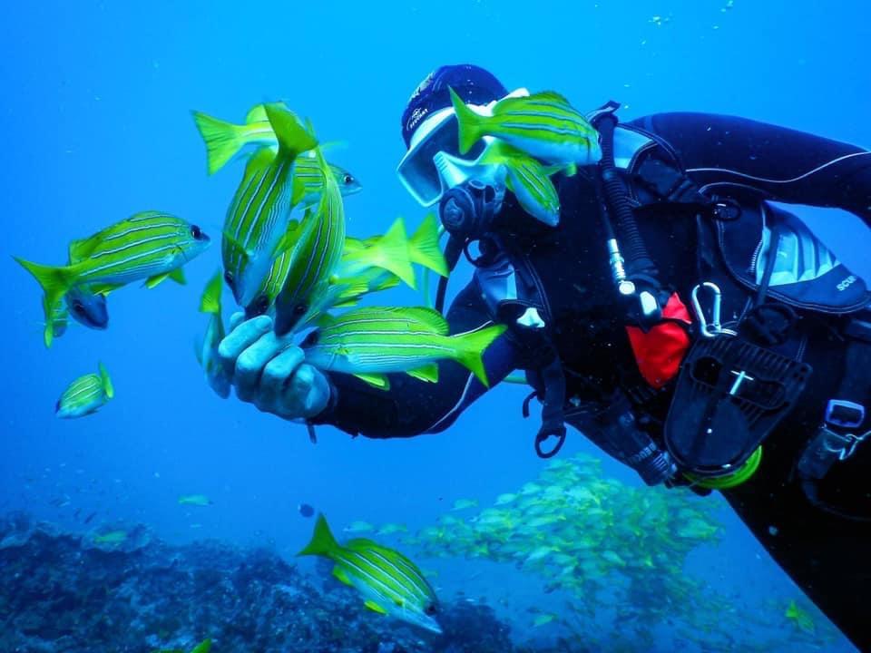 Plongée découverte dans le Lagon de Salary Bay